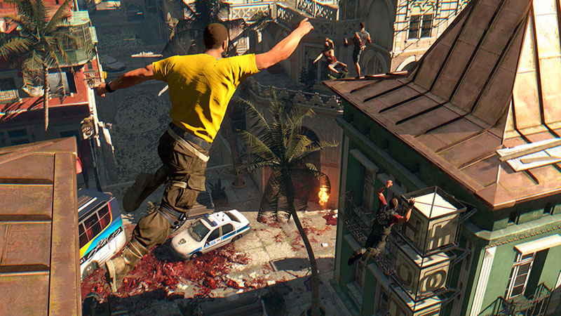 dying light coop 2