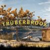 Trüberbrook [REVIEW]