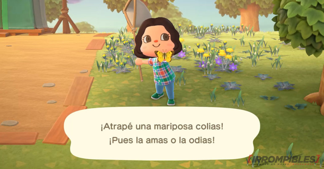 Animal Crossing New Horizons mariposa