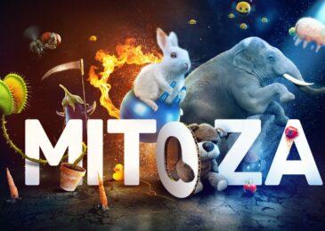 Mitoza, de absurdo en absurdo
